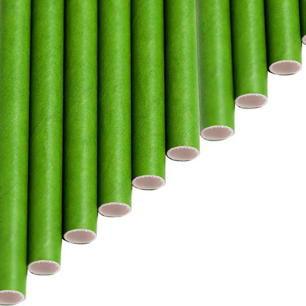 Trinkhalme aus Papier - Einfarbig Grün - Grasgrün