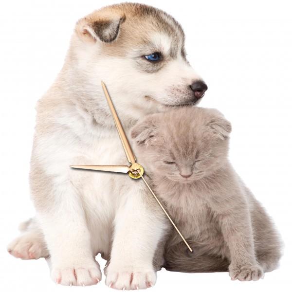 Design Wanduhr - Hunde + Katzenwelpen - Uhr sitzend
